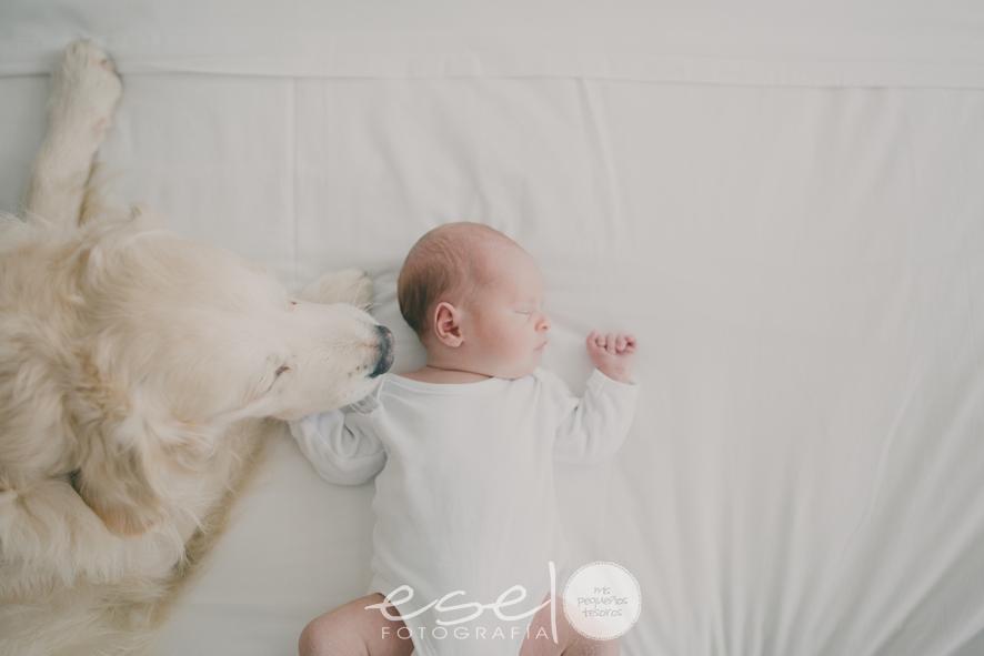 ESEL FOTOGRAFIA newborn lifestyle013